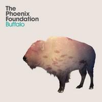 buffalo-phoenix-foundation Top Albums 2011