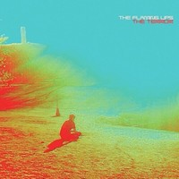 flat_flaminglips Top albums 2013