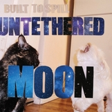 built-to-spill-untethered-moon Les sorties d'albums pop, rock, electro du 20 avril 2015