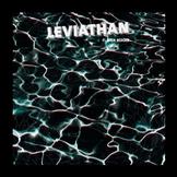 leviathan-flavien-berger Les sorties d'albums pop, rock, electro du 20 avril 2015