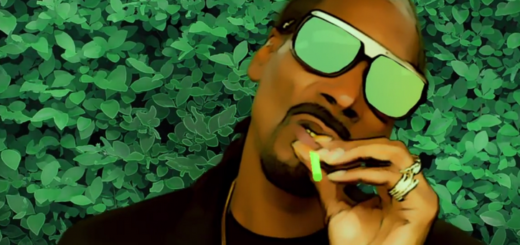 Snoop Dogg - Bush photo
