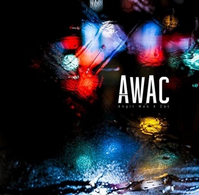 awac-angil-was-a-cat Les sorties d'albums pop, rock, electro, rap du 15 janvier 2016