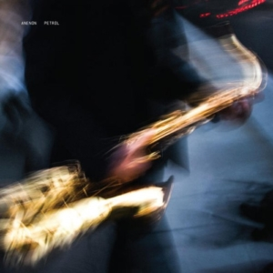 aneon-petrol-300x300 Les sorties d'albums pop, rock, electro du 4 mars 2016