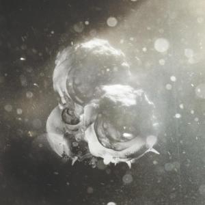 richard-birkin-vigils-300x300 Les sorties d'albums pop, rock, electro du 11 mars 2016