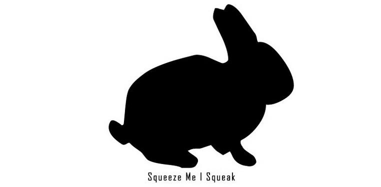 Squeeze-Me-i-Squeak Réédition de l'album de Squeeze Me I Squeak sur le label de KIM