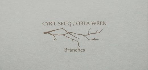 Cyril Secq Orla Wren branches