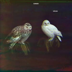 dungen-haxan-300x300 Les sorties d'albums pop, rock, electro du 18 novembre 2016