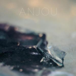 anjou-epithymia-300x300 Les sorties d'albums pop, rock, electro, jazz du 24 mars 2017