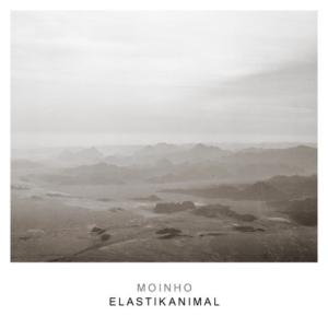 Moinho-Elastikanimal-300x300 Les sorties d'albums pop, rock, electro, jazz du 12 mai 2017