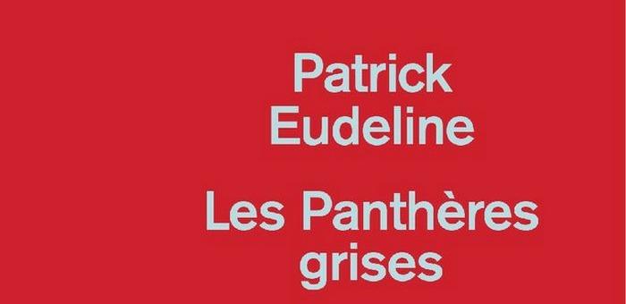 Les Panthères grises - Patrick Eudeline