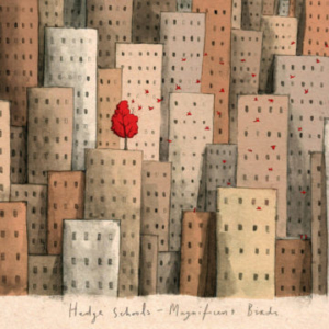 The-Hedge-Schools-Magnificent-Birds-360x360-300x300 Les sorties d'albums pop, rock, electro, rap, jazz du 4 mai 2018