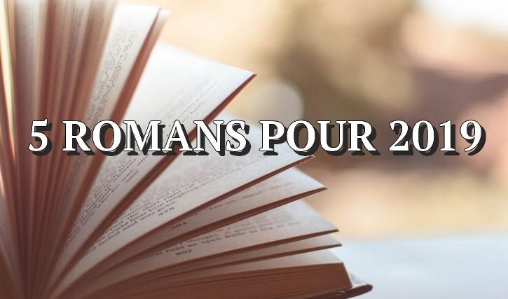 romans 5 très bons romans à retenir de 2019
