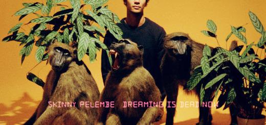 Skinny Pelembe – Dreaming Is Dead Now