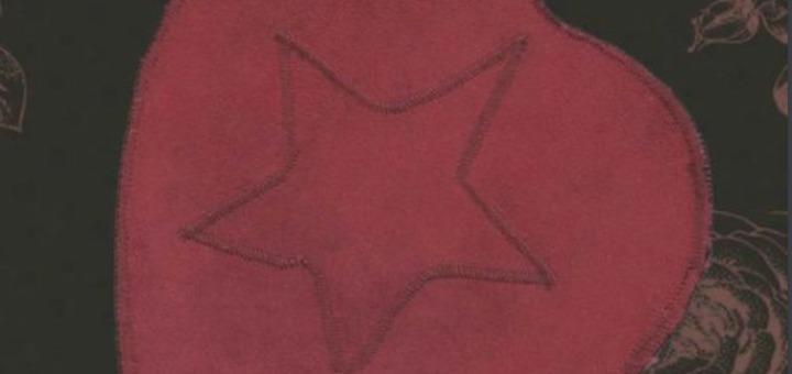 Birch Book - Heart Star Gift